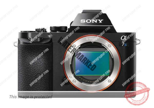 Which Sony's Full-Frame Mirrorless Camera Provides The Biggest Bang For Your Buck?