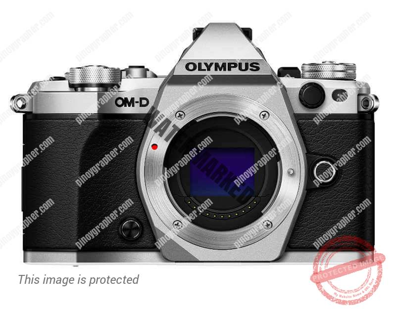 A Long Peep at the Olympus OM-D E-M5 Mark II