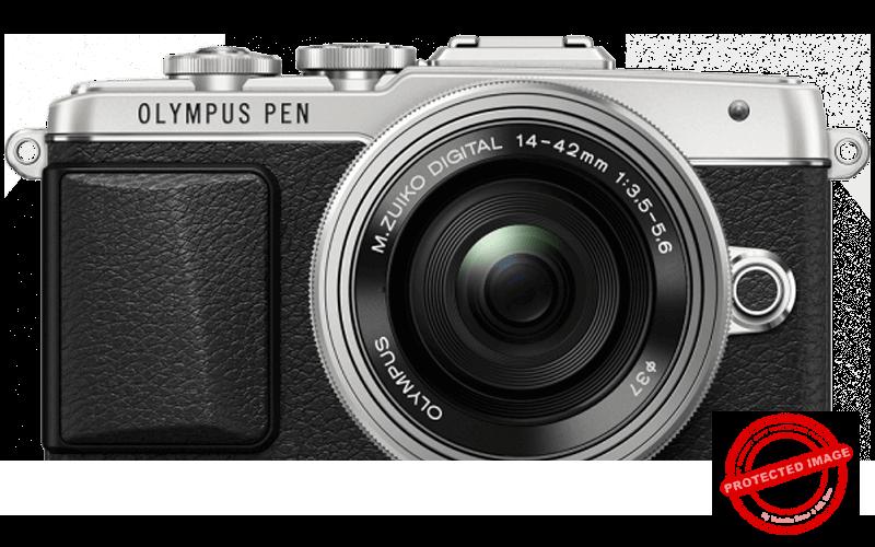 Olympus PEN E-PL7 Best Camera for Selfies